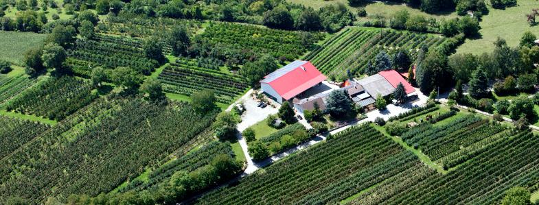 Luftbild Obstbau Wenz